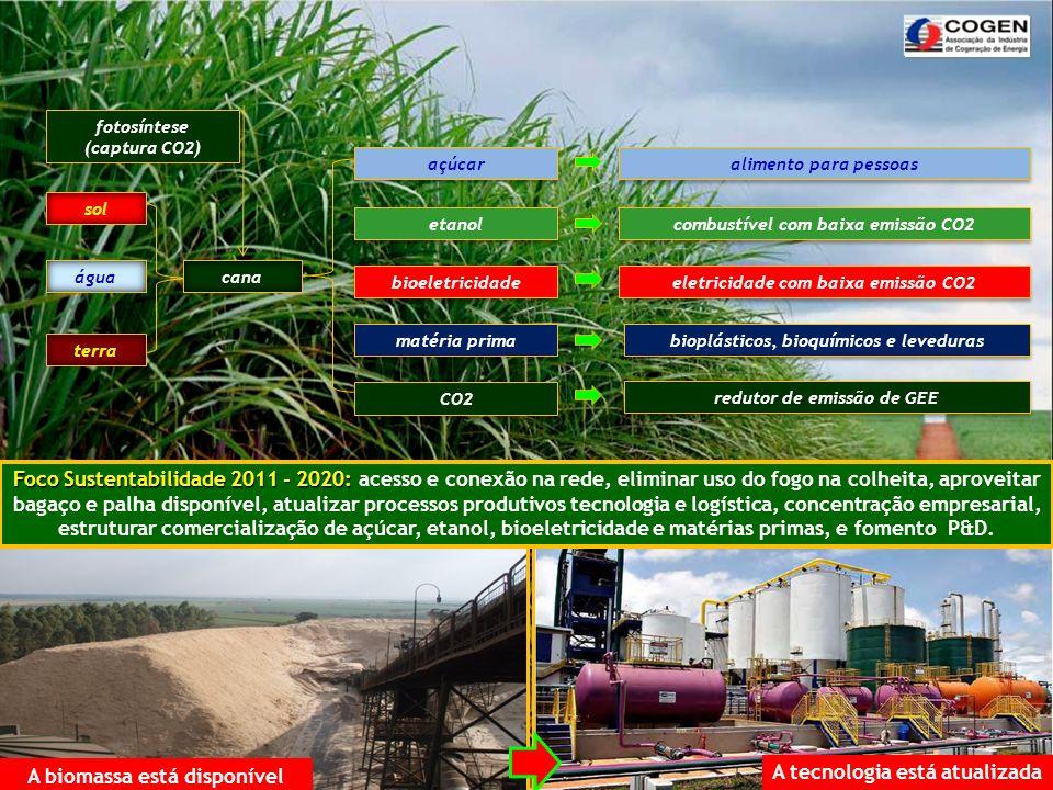 A biomassa está disponível A tecnologia está atualizada