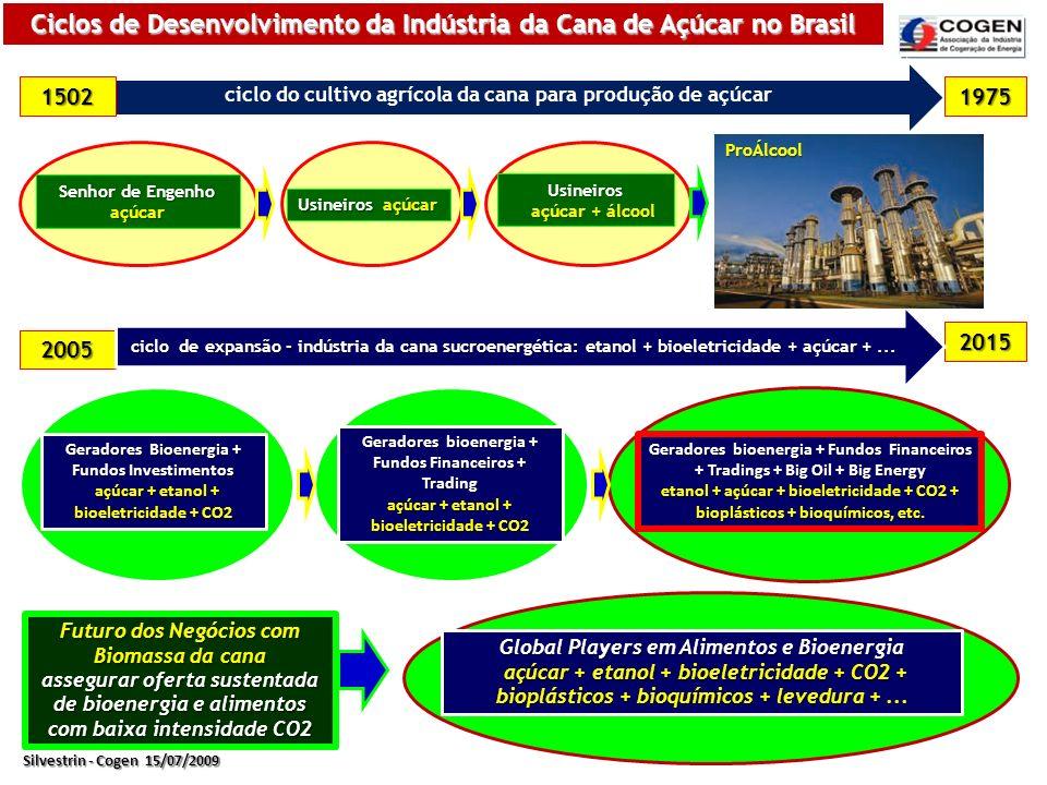 Ciclos de Desenvolvimento da Indústria da Cana de Açúcar no Brasil