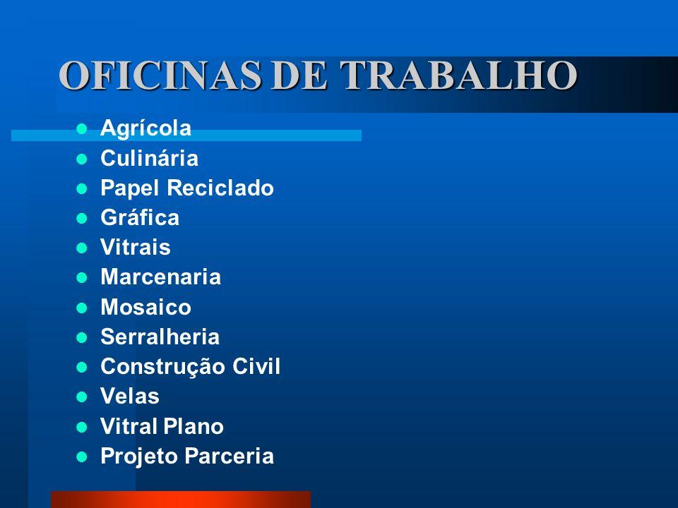 OFICINAS DE TRABALHO Agrícola Culinária Papel Reciclado Gráfica