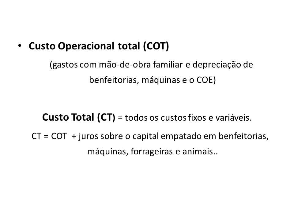 Custo Total (CT) = todos os custos fixos e variáveis.