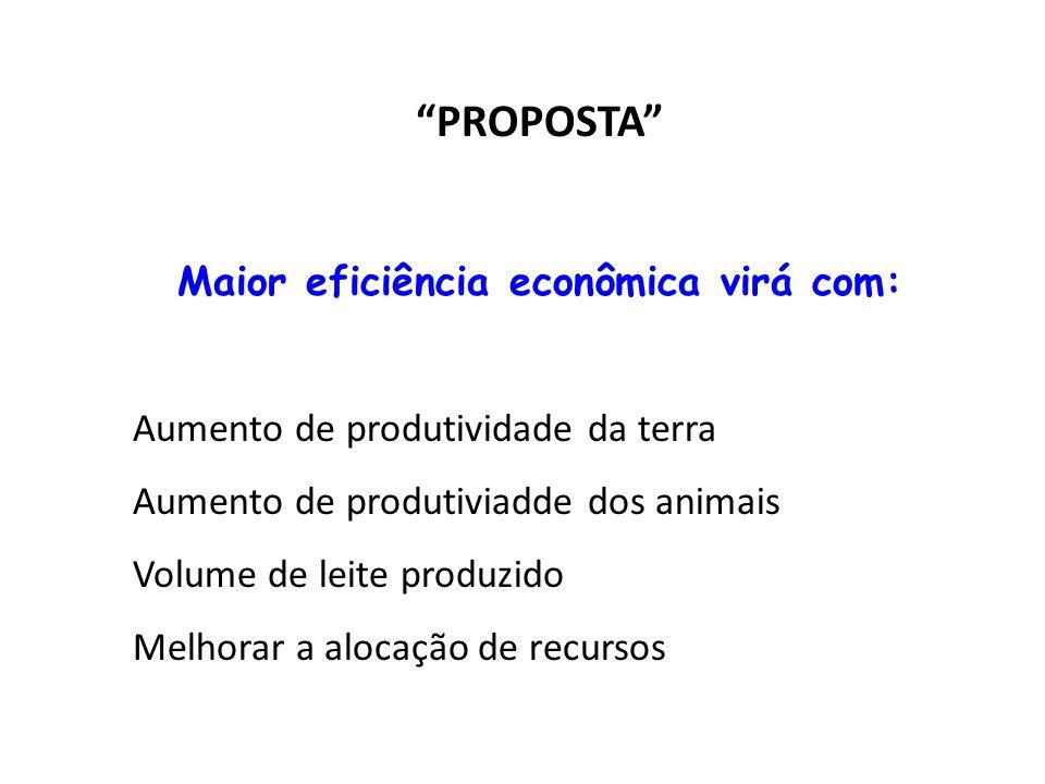 Maior eficiência econômica virá com: