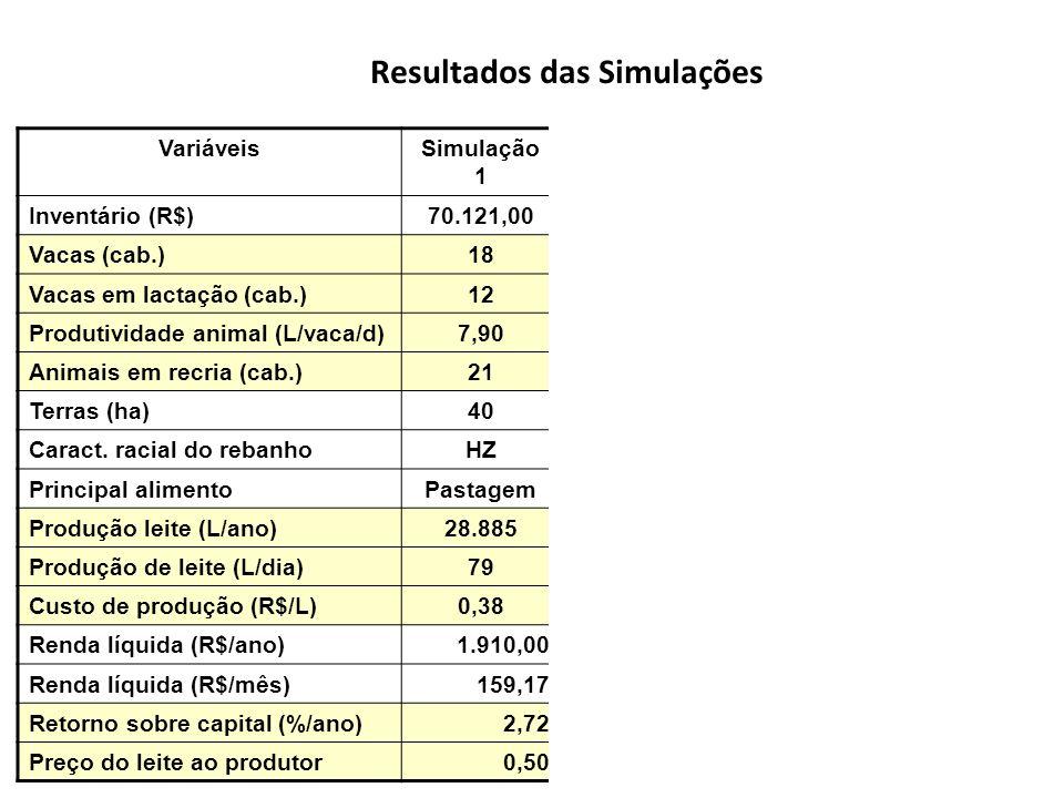 Resultados das Simulações