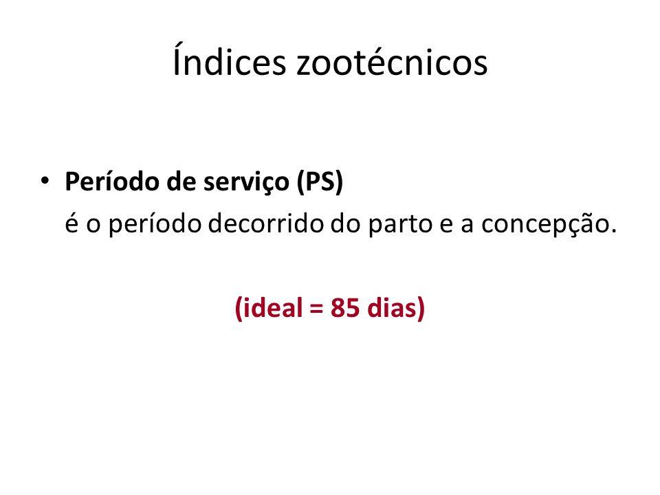 Índices zootécnicos Período de serviço (PS)