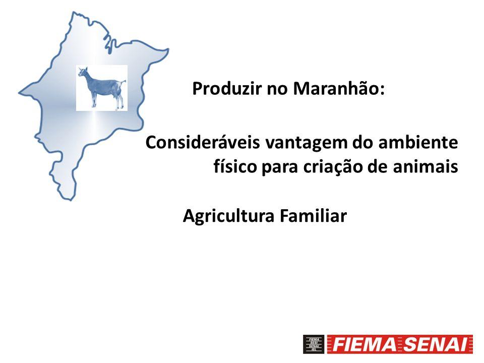 Produzir no Maranhão:Consideráveis vantagem do ambiente físico para criação de animais.