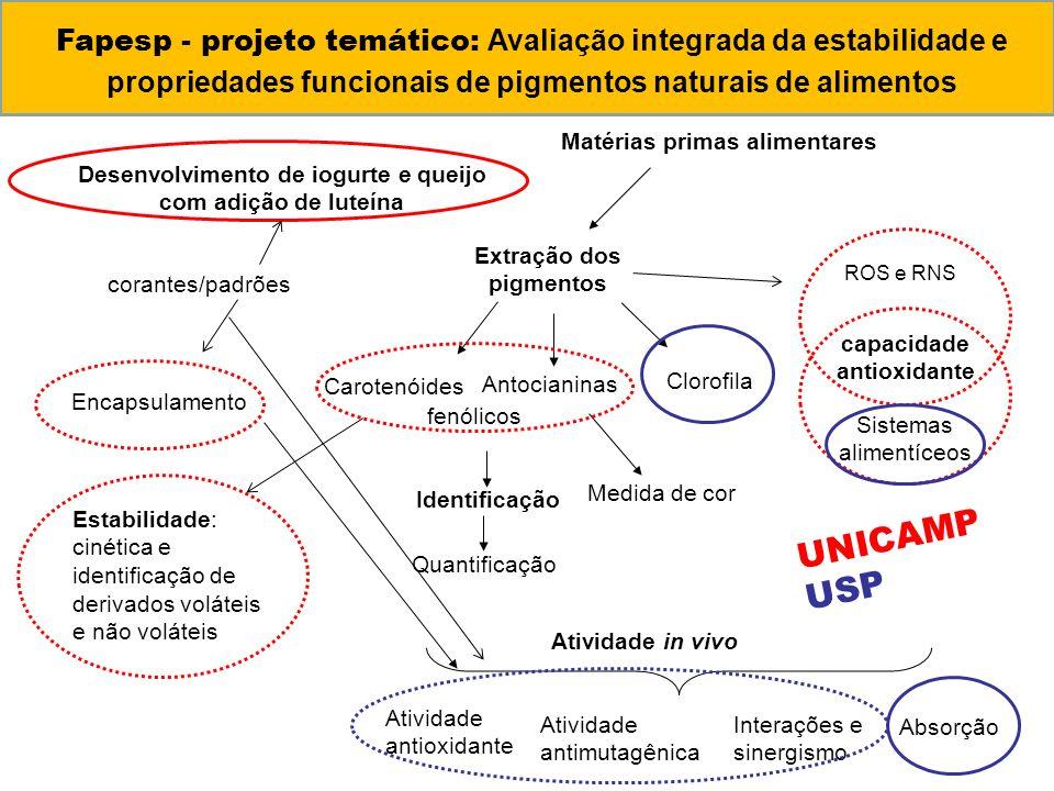 Fapesp - projeto temático: Avaliação integrada da estabilidade e propriedades funcionais de pigmentos naturais de alimentos