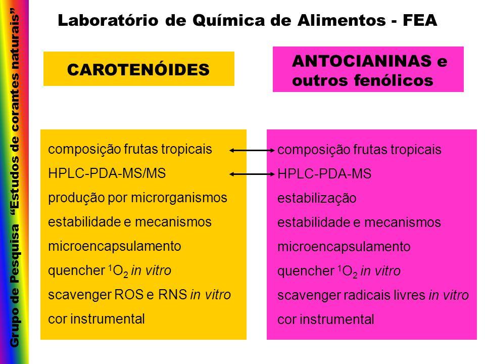 Laboratório de Química de Alimentos - FEA