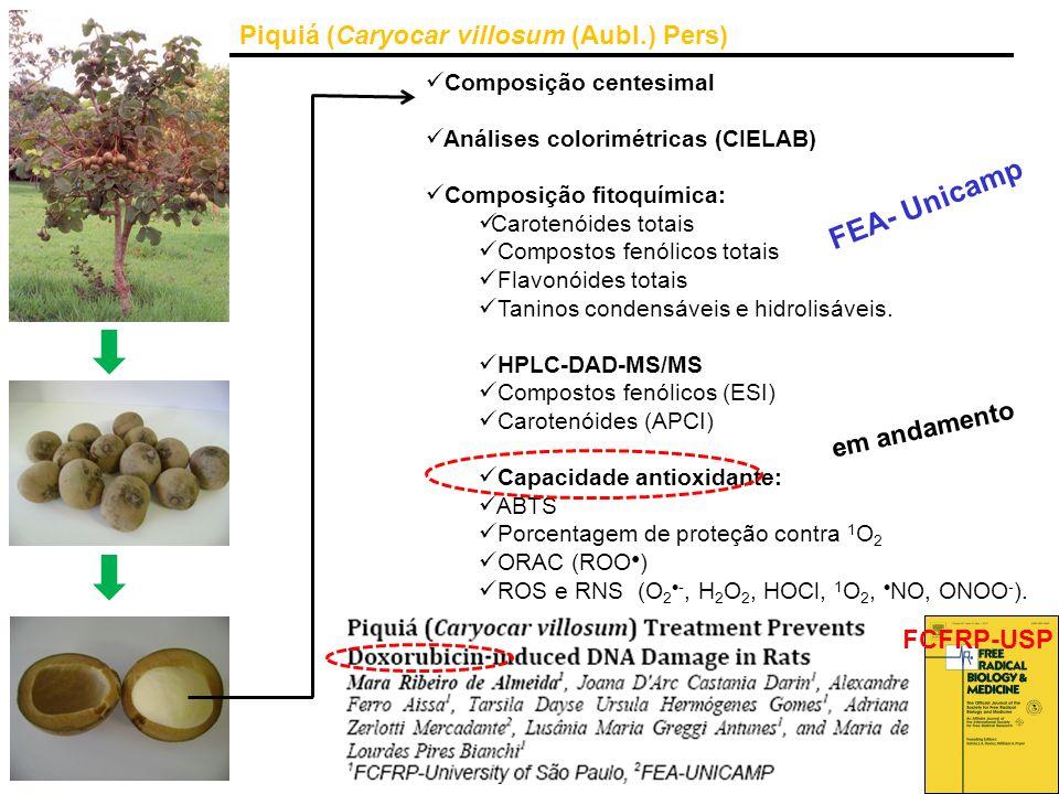 FEA- Unicamp Piquiá (Caryocar villosum (Aubl.) Pers) em andamento