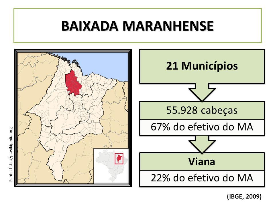 BAIXADA MARANHENSE 21 Municípios 55.928 cabeças 67% do efetivo do MA