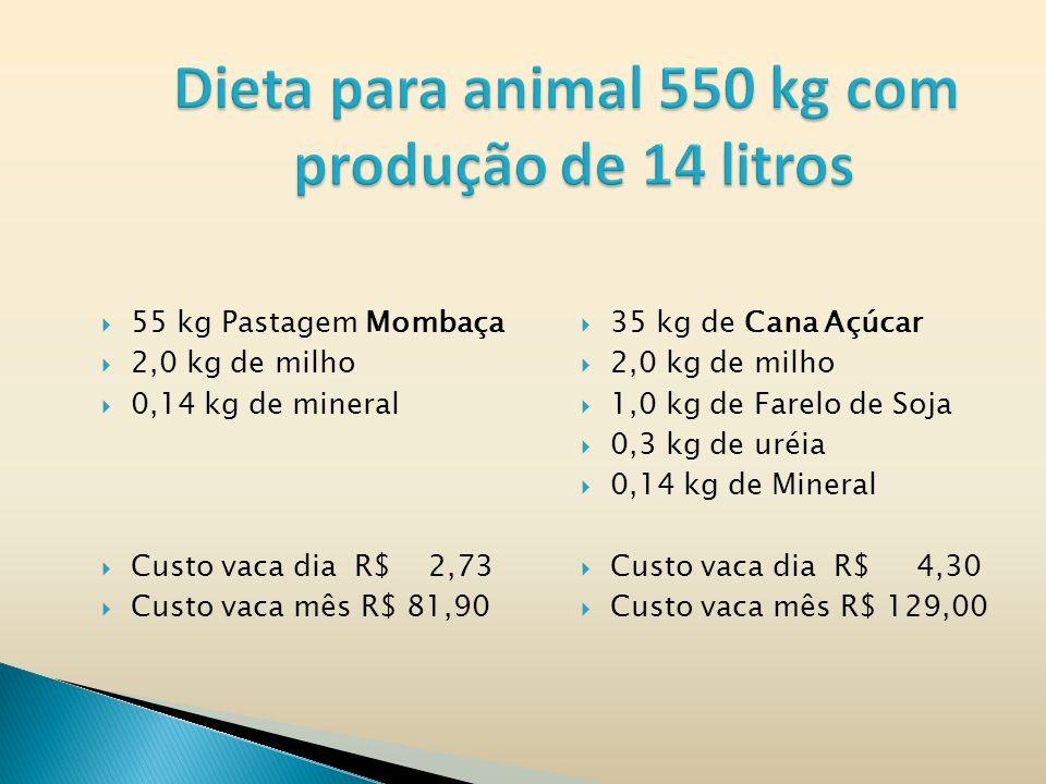 Dieta para animal 550 kg com produção de 14 litros