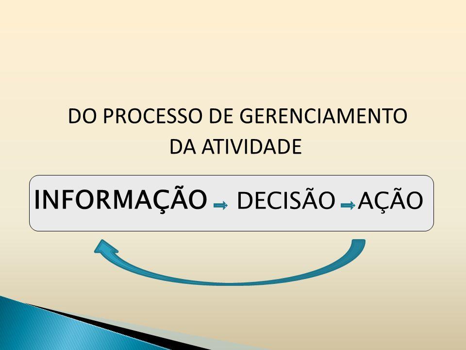 DO PROCESSO DE GERENCIAMENTO