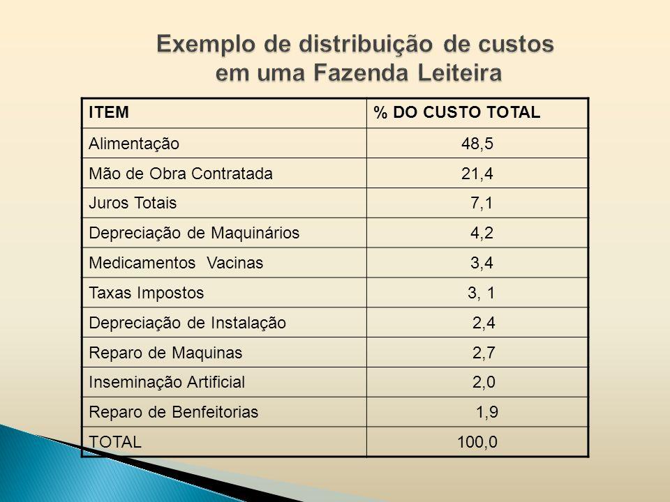 Exemplo de distribuição de custos em uma Fazenda Leiteira