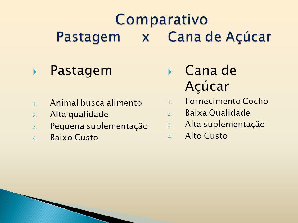 Comparativo Pastagem x Cana de Açúcar