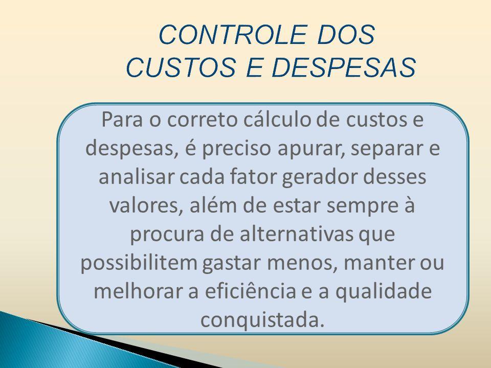 CONTROLE DOS CUSTOS E DESPESAS