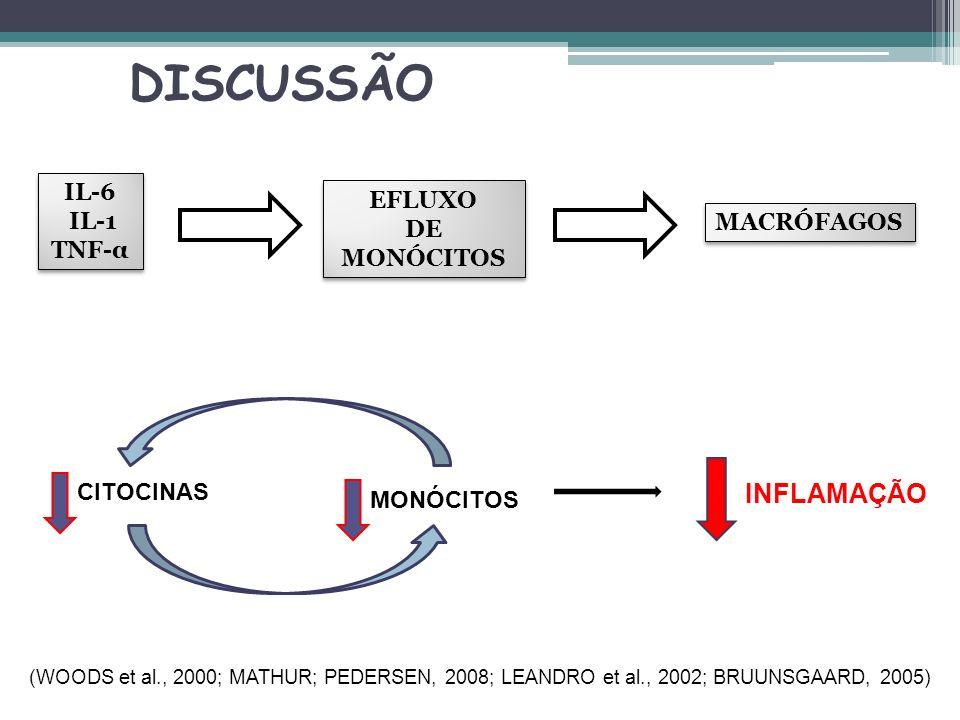 DISCUSSÃO INFLAMAÇÃO IL-6 EFLUXO IL-1 DE MONÓCITOS TNF-α MACRÓFAGOS