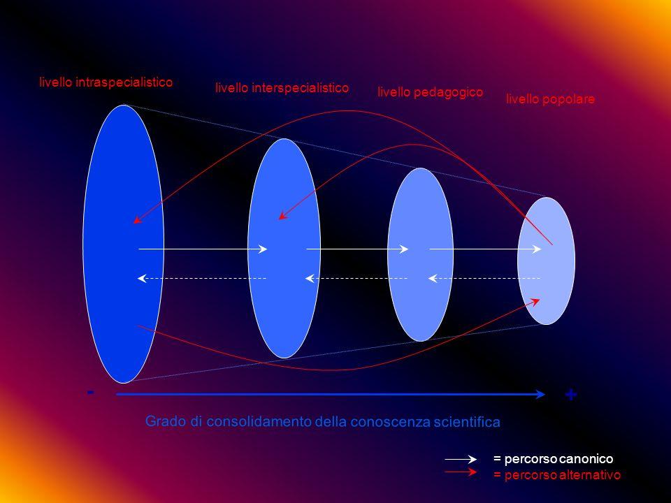 - + Grado di consolidamento della conoscenza scientifica