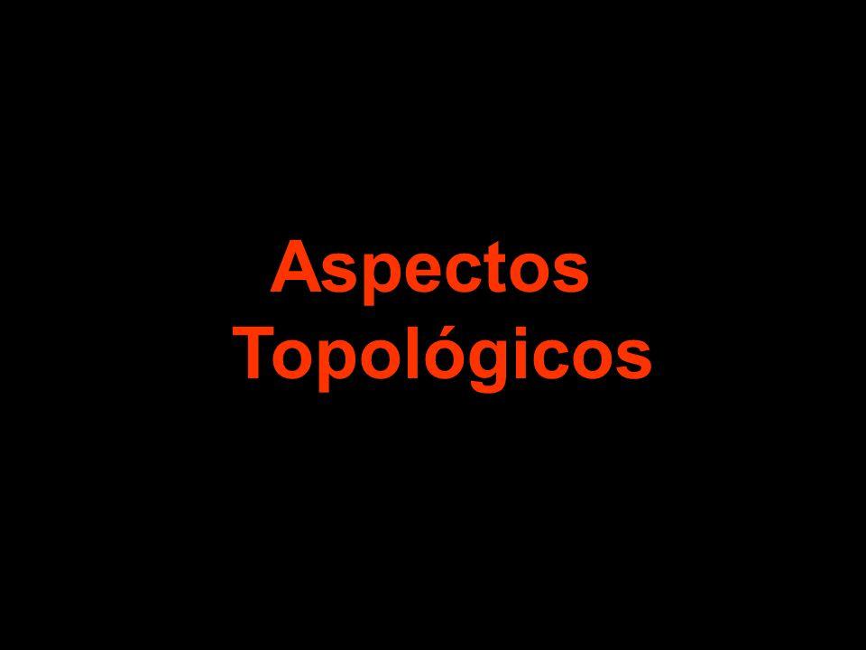 Aspectos Topológicos