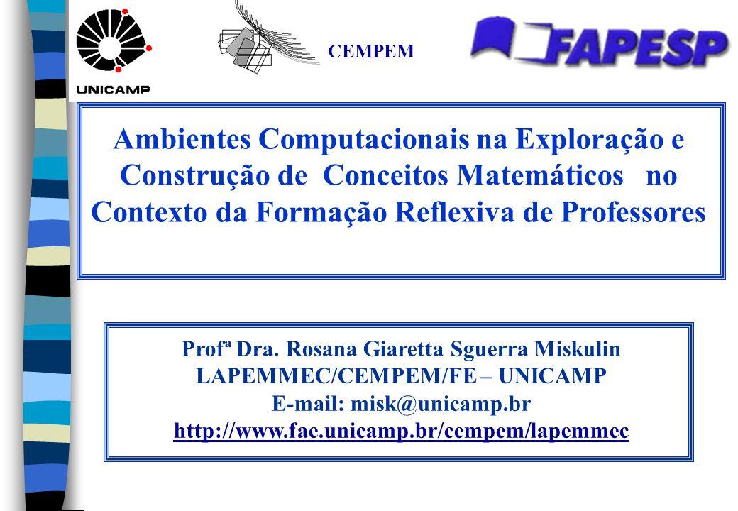 E-mail: misk@unicamp.br