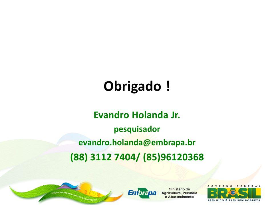 Obrigado ! Evandro Holanda Jr. (88) 3112 7404/ (85)96120368