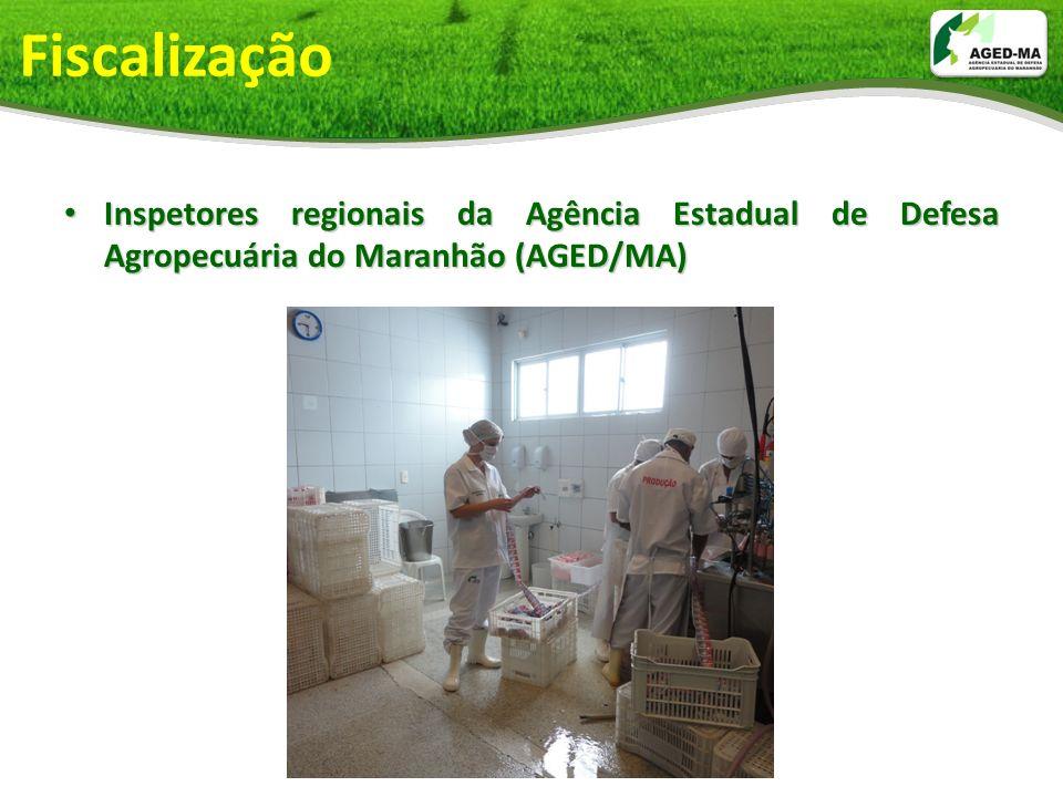 Fiscalização Inspetores regionais da Agência Estadual de Defesa Agropecuária do Maranhão (AGED/MA)