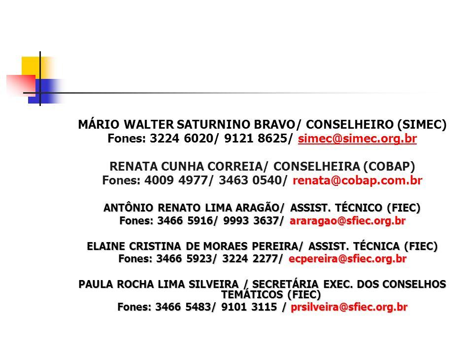MÁRIO WALTER SATURNINO BRAVO/ CONSELHEIRO (SIMEC)