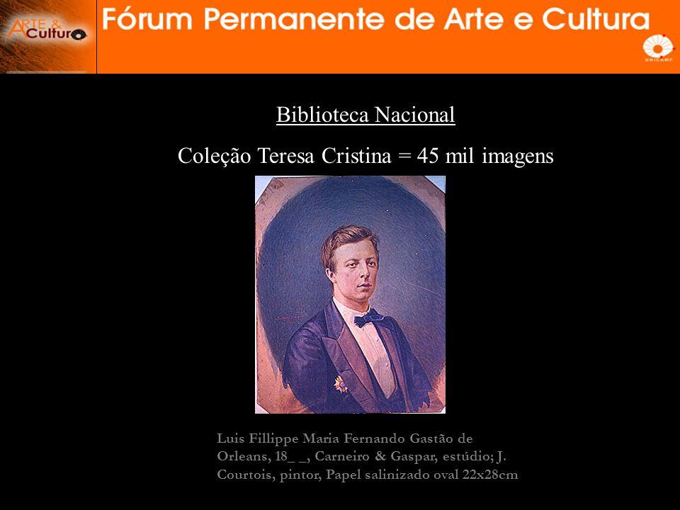 Coleção Teresa Cristina = 45 mil imagens