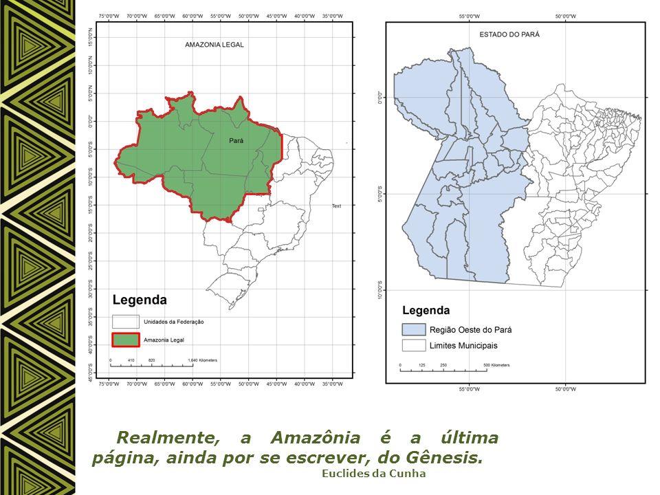 Realmente, a Amazônia é a última página, ainda por se escrever, do Gênesis.
