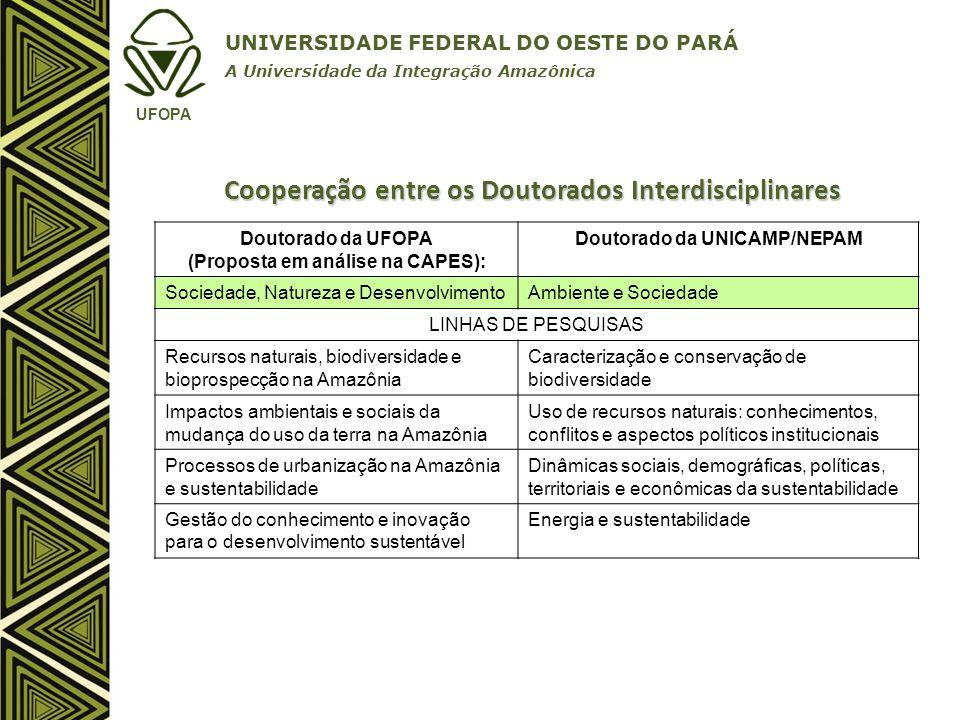 Cooperação entre os Doutorados Interdisciplinares