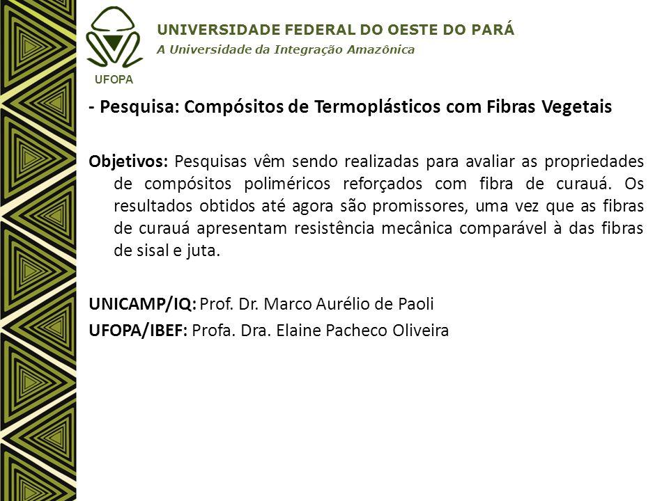 - Pesquisa: Compósitos de Termoplásticos com Fibras Vegetais