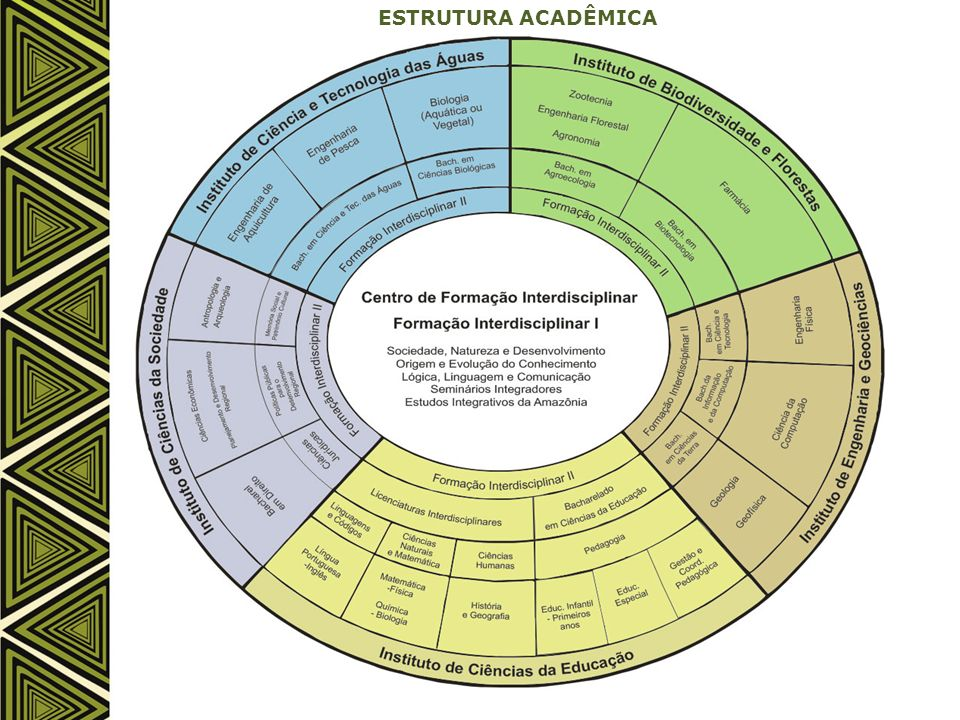ESTRUTURA ACADÊMICA UFOPA