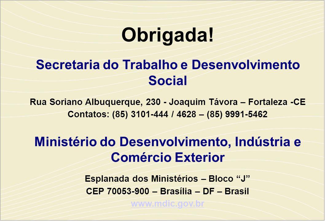 Obrigada! Secretaria do Trabalho e Desenvolvimento Social