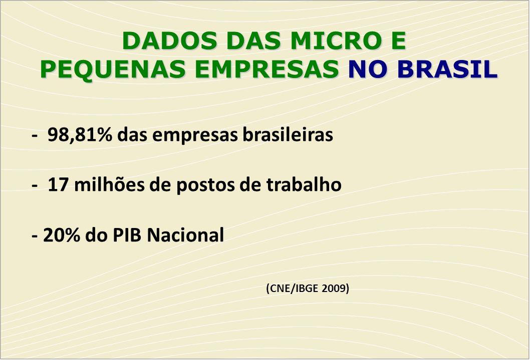 PEQUENAS EMPRESAS NO BRASIL