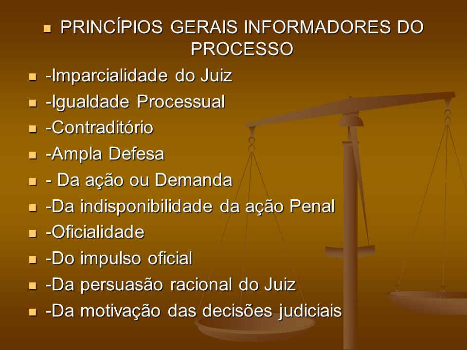 PRINCÍPIOS GERAIS INFORMADORES DO PROCESSO