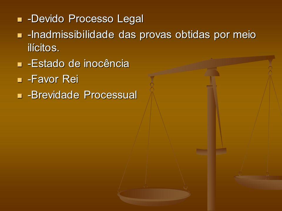 -Devido Processo Legal