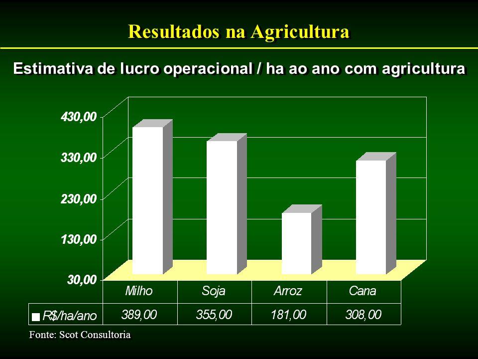 Resultados na Agricultura