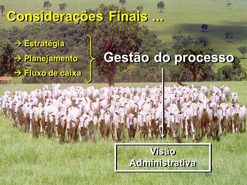 Considerações Finais ... Gestão do processo Visão Administrativa