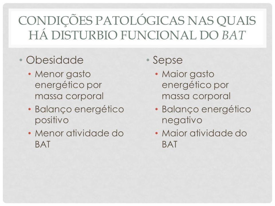 CONDIÇÕES PATOLÓGICAS NAS QUAIS HÁ DISTURBIO FUNCIONAL DO BAT