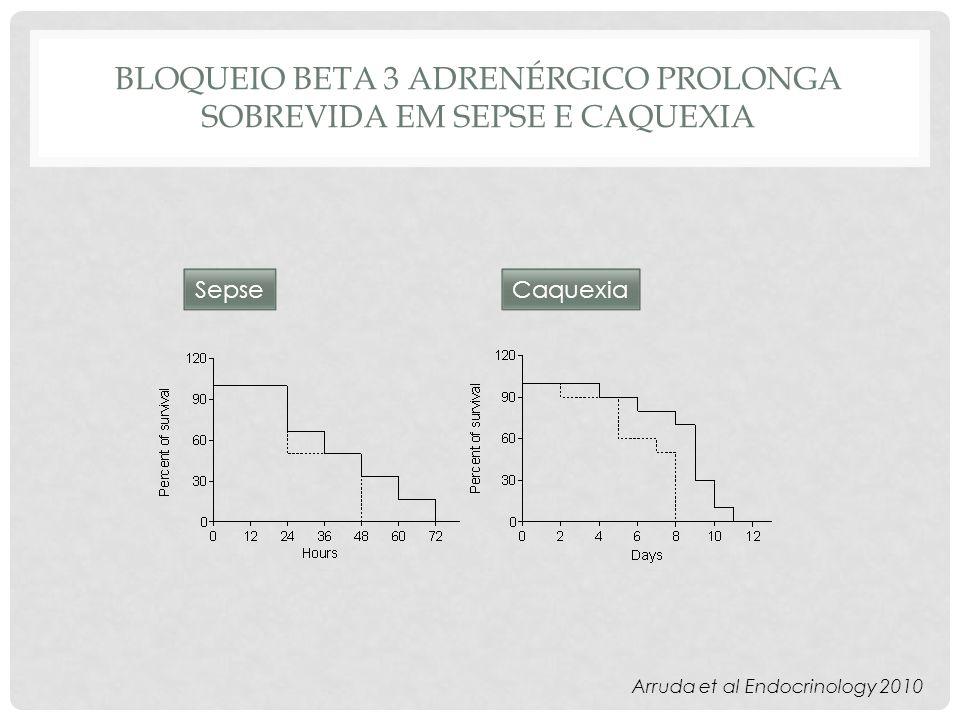 Bloqueio beta 3 adrenérgico prolonga sobrevida em sepse e caquexia