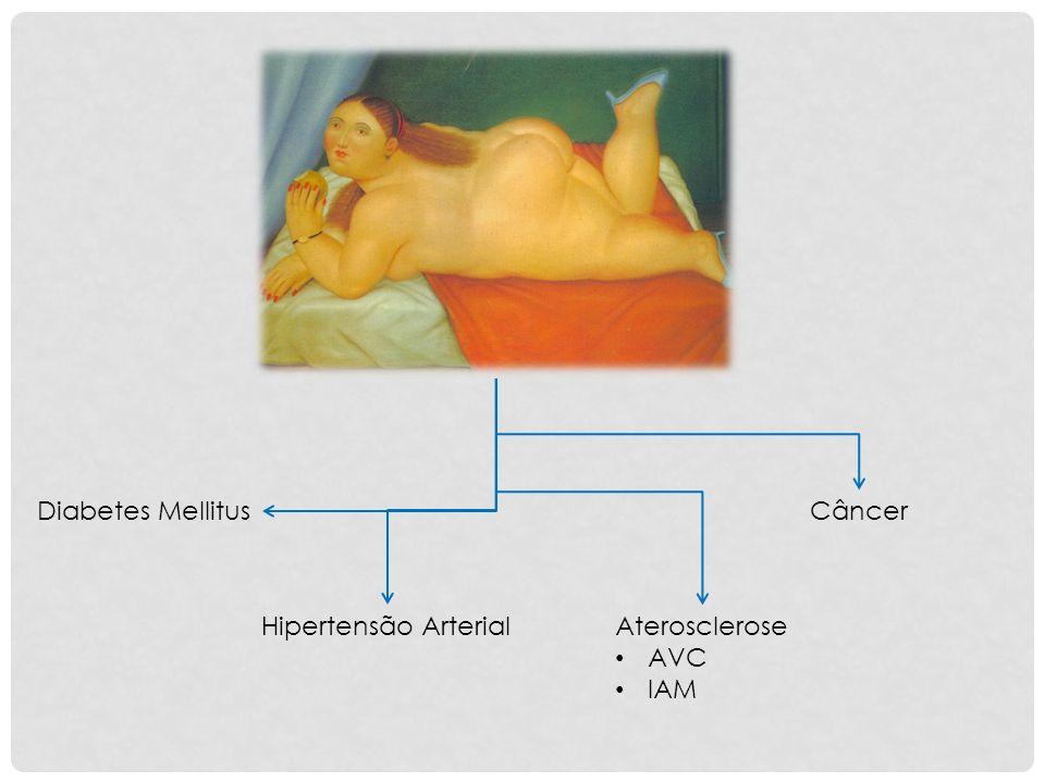 Diabetes Mellitus Câncer Hipertensão Arterial Aterosclerose AVC IAM