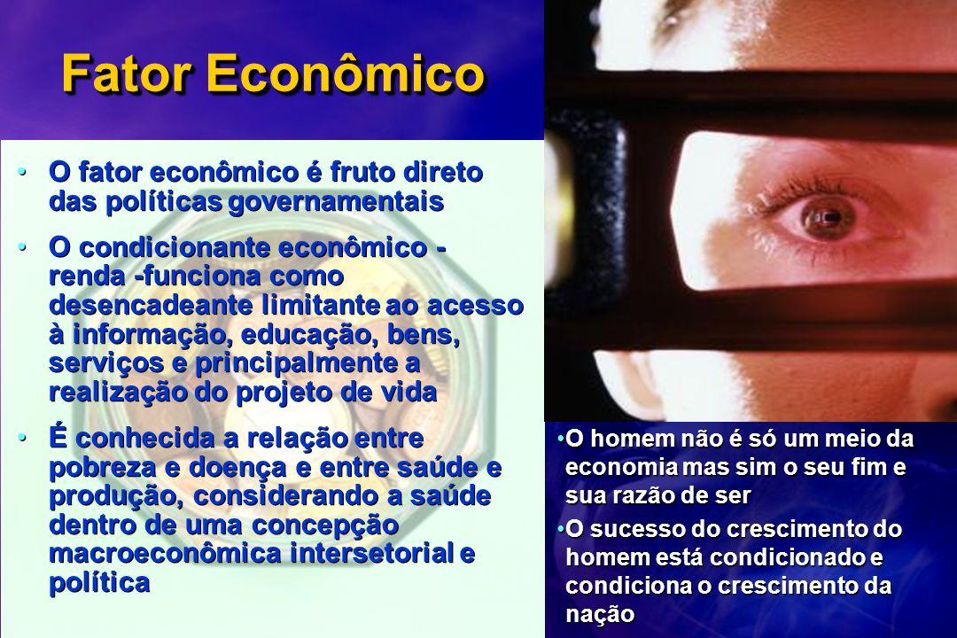 Fator Econômico O fator econômico é fruto direto das políticas governamentais.