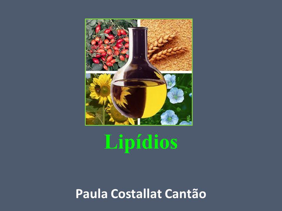 Paula Costallat Cantão