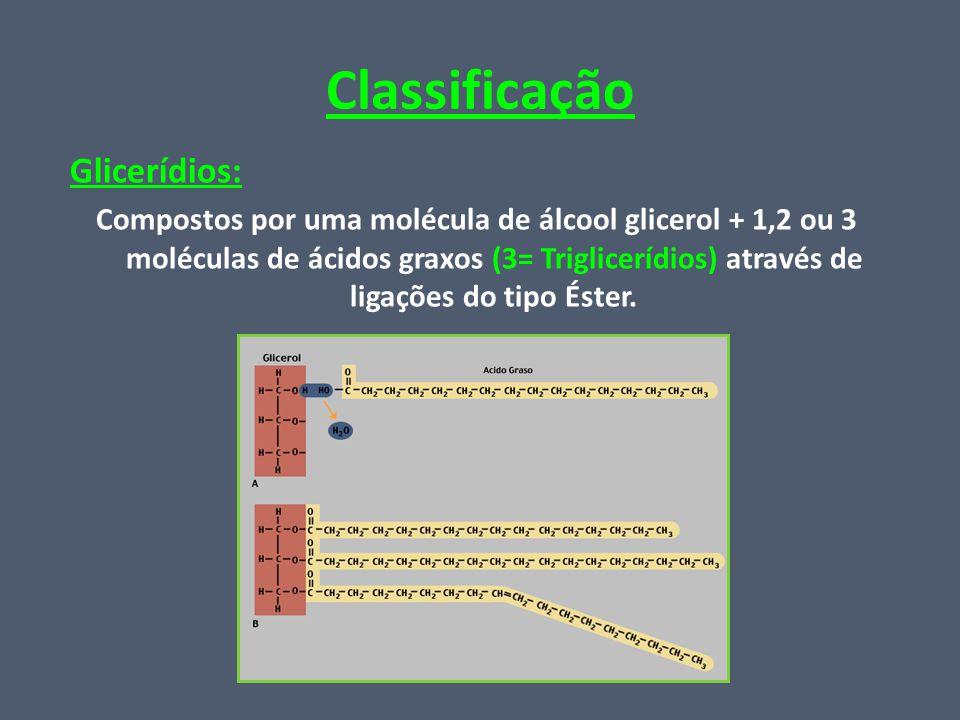 Classificação Glicerídios: