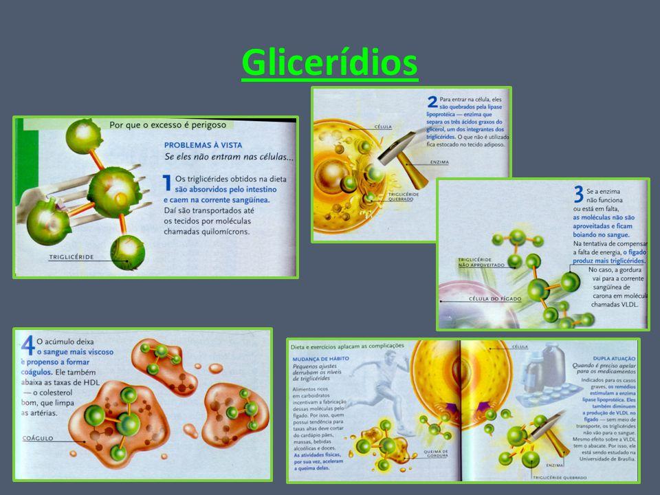 Glicerídios