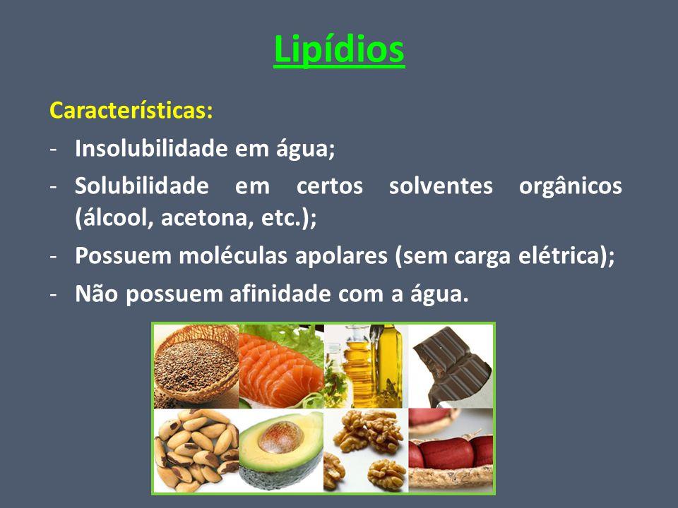 Lipídios Características: Insolubilidade em água;