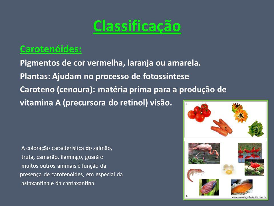 Classificação Carotenóides: