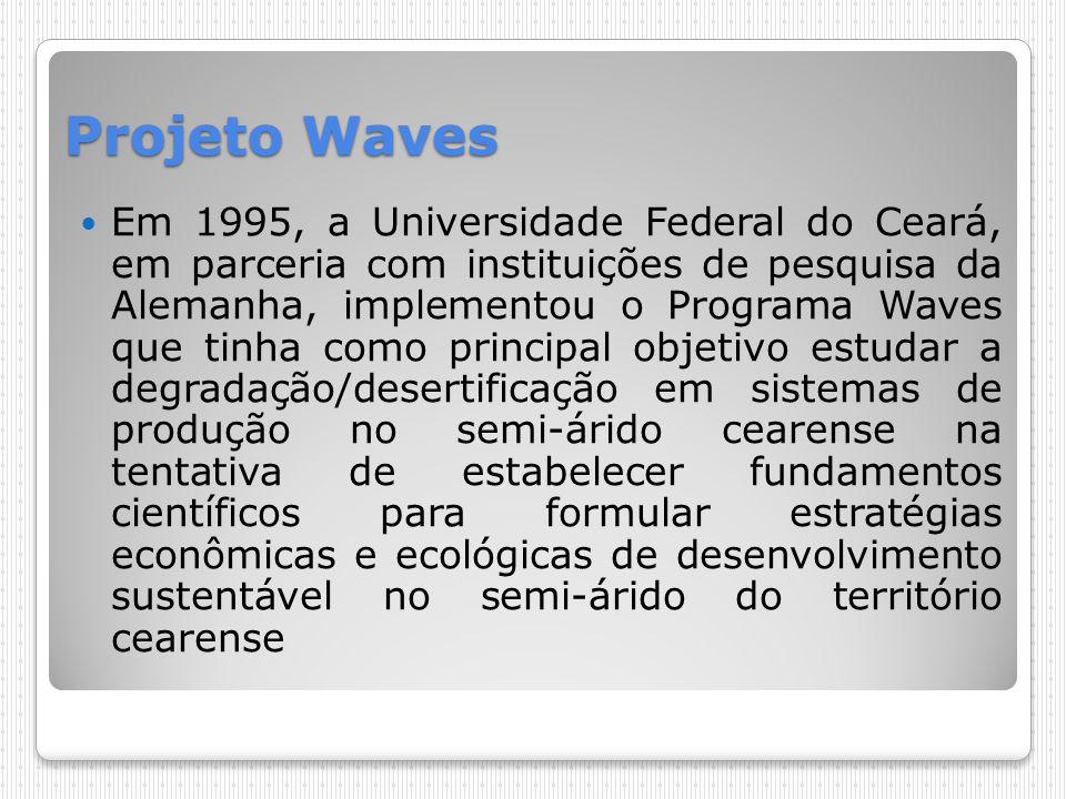 Projeto Waves