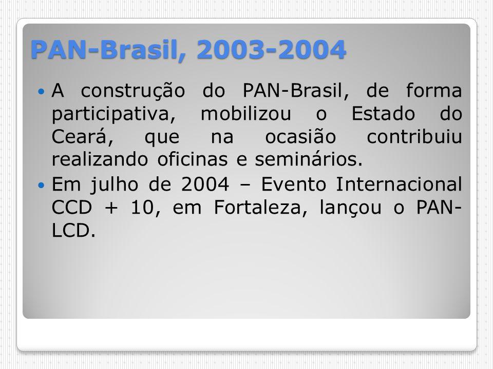 PAN-Brasil, 2003-2004