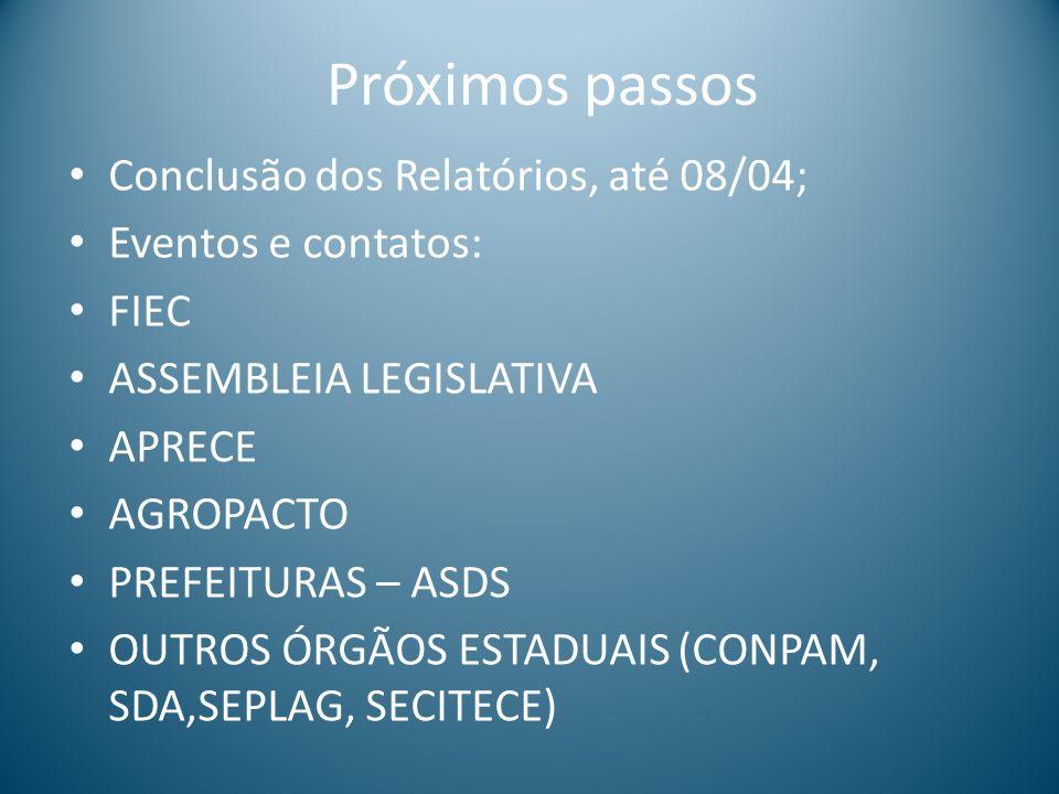 Próximos passos Conclusão dos Relatórios, até 08/04;