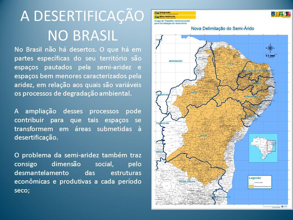 A DESERTIFICAÇÃO NO BRASIL