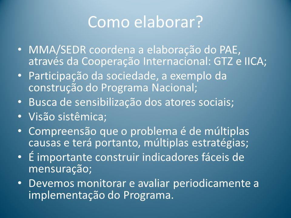 Como elaborar MMA/SEDR coordena a elaboração do PAE, através da Cooperação Internacional: GTZ e IICA;