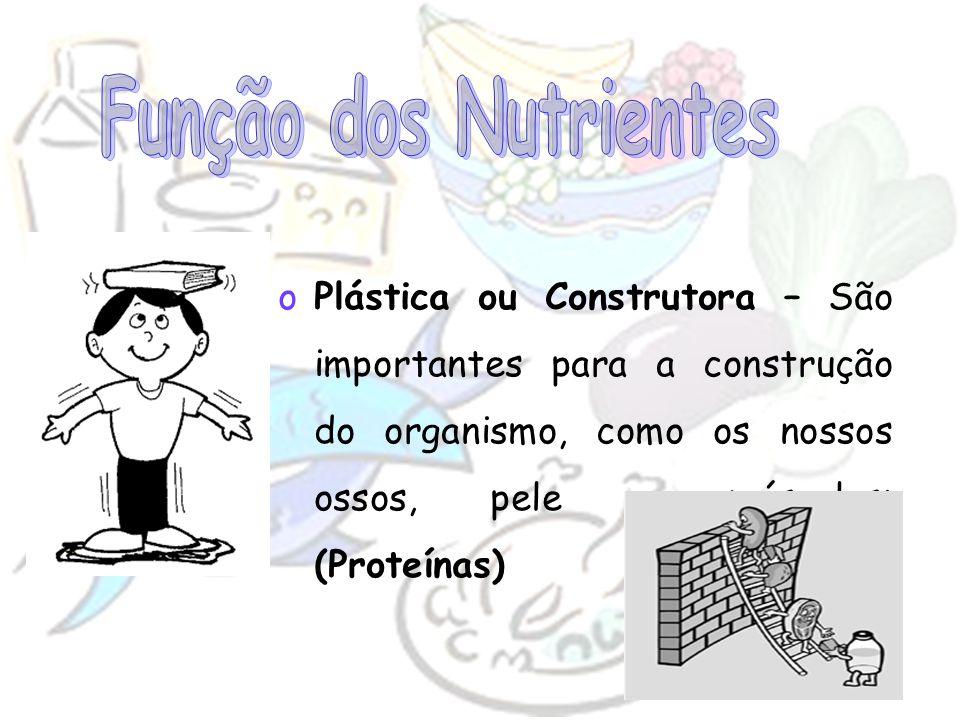 Função dos Nutrientes Plástica ou Construtora – São importantes para a construção do organismo, como os nossos ossos, pele e músculos; (Proteínas)